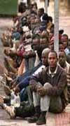 Guissona llegará este año al 50% de población inmigrante